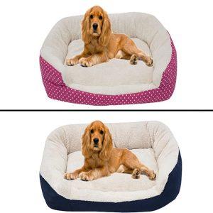 portada-cama-perros-mediana